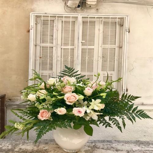 ורדים וסחלבים