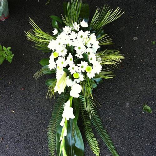 פרחים בלבן